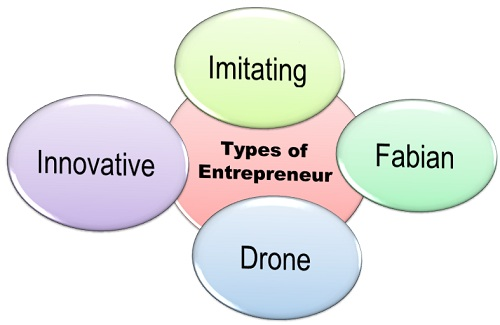 8.1 Types-of-Entrepreneur