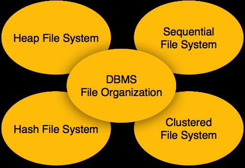 3.1 file_organization.png